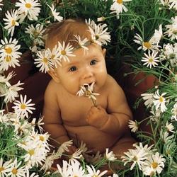Пазл онлайн: Малыш в ромашках