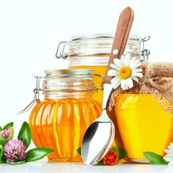 Пазл онлайн: Разный мед