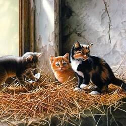 Пазл онлайн: Котята на подоконнике