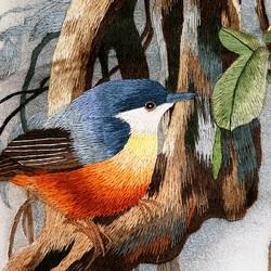 Пазл онлайн: Птичка