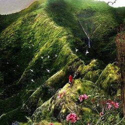Пазл онлайн: Горная тропа