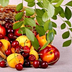 Пазл онлайн: Корзинка с фруктами