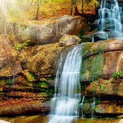 Пазл онлайн: Водопад в лесу