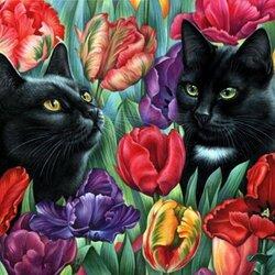 Пазл онлайн: В тюльпанах