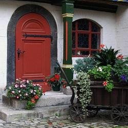 Пазл онлайн: Цветы у дома