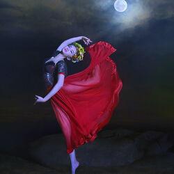 Пазл онлайн: Лунный танeц