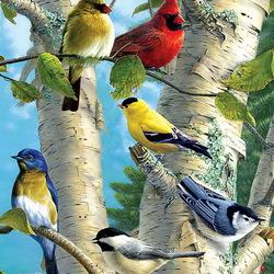 Пазл онлайн: Певчие птицы