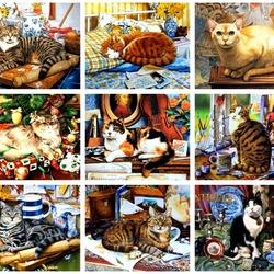 Пазл онлайн: Разные кошки