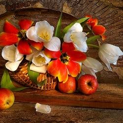 Пазл онлайн: Тюльпаны и яблоки