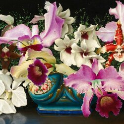 Пазл онлайн: Ваза с орхидеями