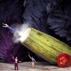Пазл онлайн: В цирке