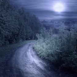 Пазл онлайн: Лунная дорога