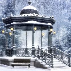 Пазл онлайн: В зимнем парке