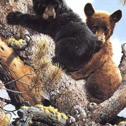 Пазл онлайн: Медвежата