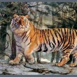 Пазл онлайн: Уссурийский тигр