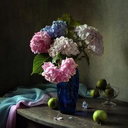 Пазл онлайн: Натюрморт с гортензией и яблоками