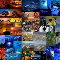 Пазл онлайн: Жизнь в гармонии с природой