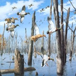 Пазл онлайн: Затопленный лес