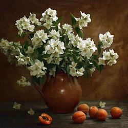 Пазл онлайн: Жасмин и абрикосы
