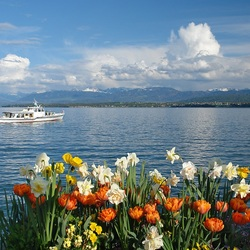 Пазл онлайн: Озеро