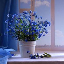 Пазл онлайн: Натюрморт в синих тонах