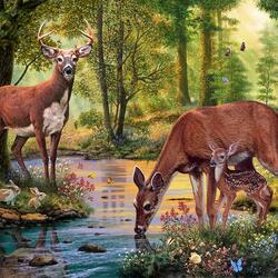 Пазл онлайн: Лесной ручей