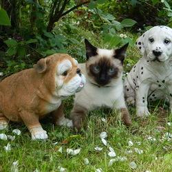 Пазл онлайн: Три товарища