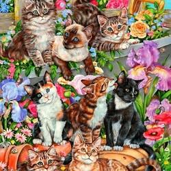 Пазл онлайн: Дружные котята