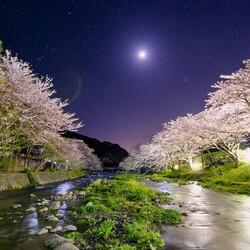 Пазл онлайн: Ночная река