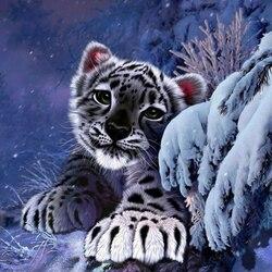 Пазл онлайн: Снежный барс