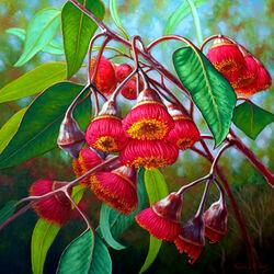 Пазл онлайн: Цветущий эвкалипт
