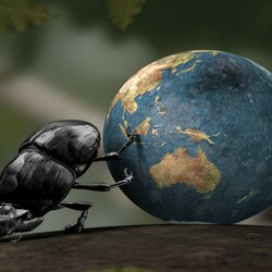 Пазл онлайн: Куда катится наш мир