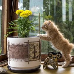 Пазл онлайн: Любопытный котенок