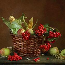 Пазл онлайн: Натюрморт с калиной, яблоками и кукурузой