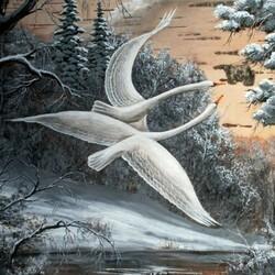 Пазл онлайн: Дикие лебеди
