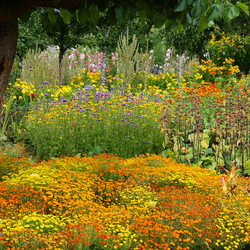 Пазл онлайн: Цветы в саду