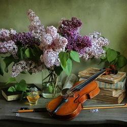 Пазл онлайн: Сирень и скрипка