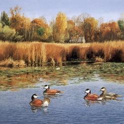 Пазл онлайн: Осенний пруд
