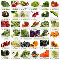 Пазл онлайн: Фруктово-овощной календарь