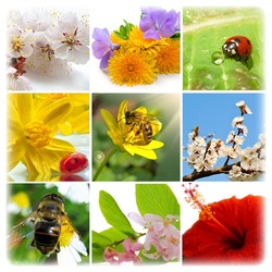 Пазл онлайн: Весна красна