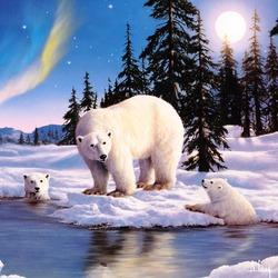 Пазл онлайн: Полярные медведи