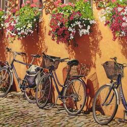 Пазл онлайн: Велосипеды