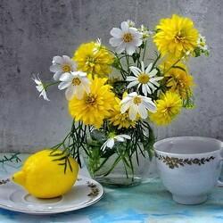 Пазл онлайн: Космеи с лимоном