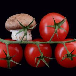 Пазл онлайн: Помидоры и гриб