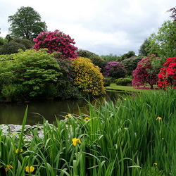 Пазл онлайн: Biddulph Grange Garden, Графство Стаффордшир