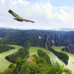 Пазл онлайн: С высоты птичьего полета