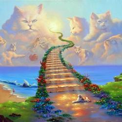 Пазл онлайн: Кошачьи небеса