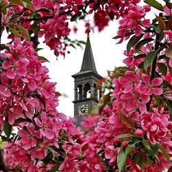 Пазл онлайн: Весна в Праге