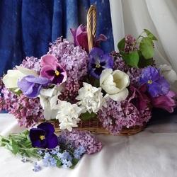 Пазл онлайн: Весенняя роскошь цветов