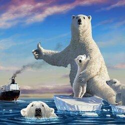Пазл онлайн: Автостопом по Арктике